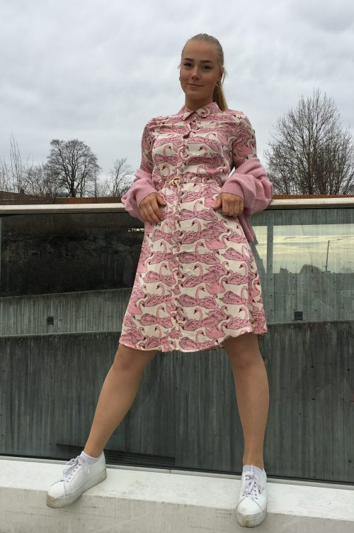 Rosa med svaner viskose kjole med belte Fabienne Chapot - mila dress