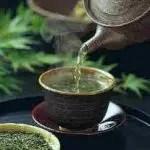 te verde 150x150 Il té verde e le sue virtù anti colesterolo