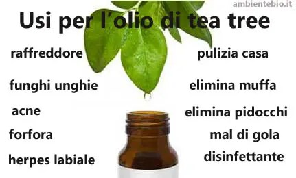 olio di tea tree