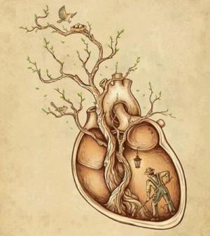 cuore alberi