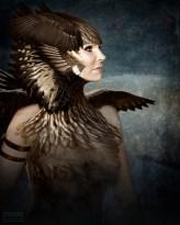 gretchen190b_feathers_web