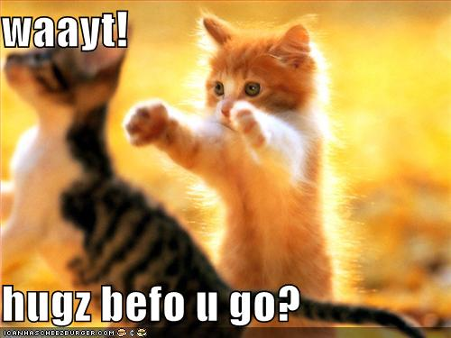 funny-pictures-kittens-hugs-before-you-go