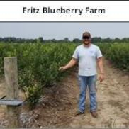 Fritz Blueberries