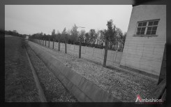 Concentration Camp Walls