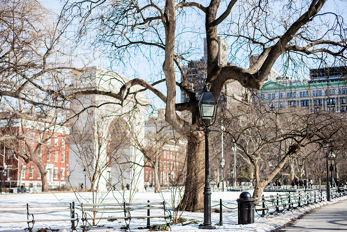 Beautiful photos of New York City February 2015 Washington Square Park