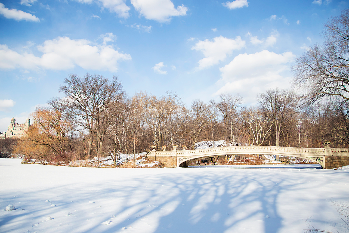 Beautiful photos of New York City February 2015 Bow Bridge in Central Park