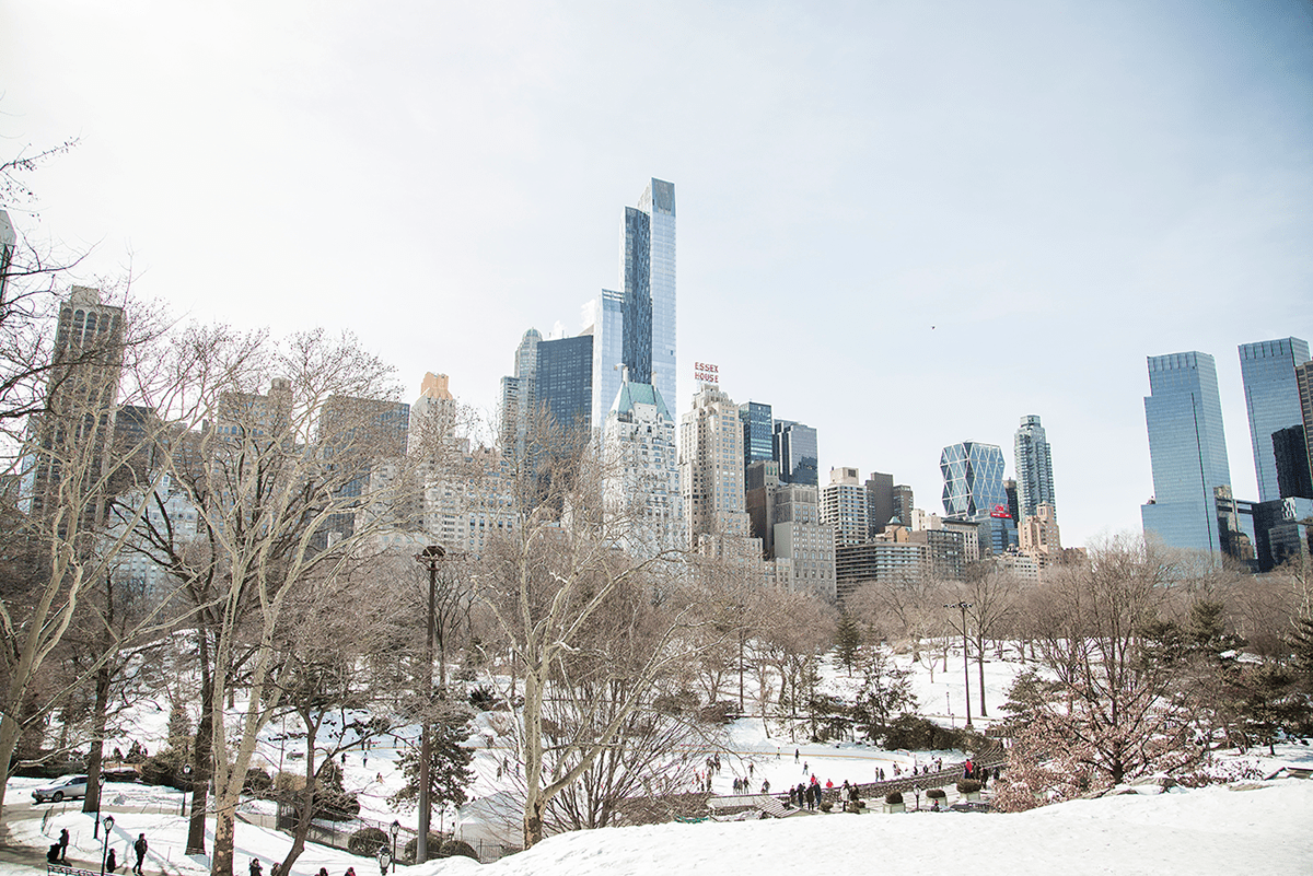 New York City february 2015 photo journal Central park buildings essex
