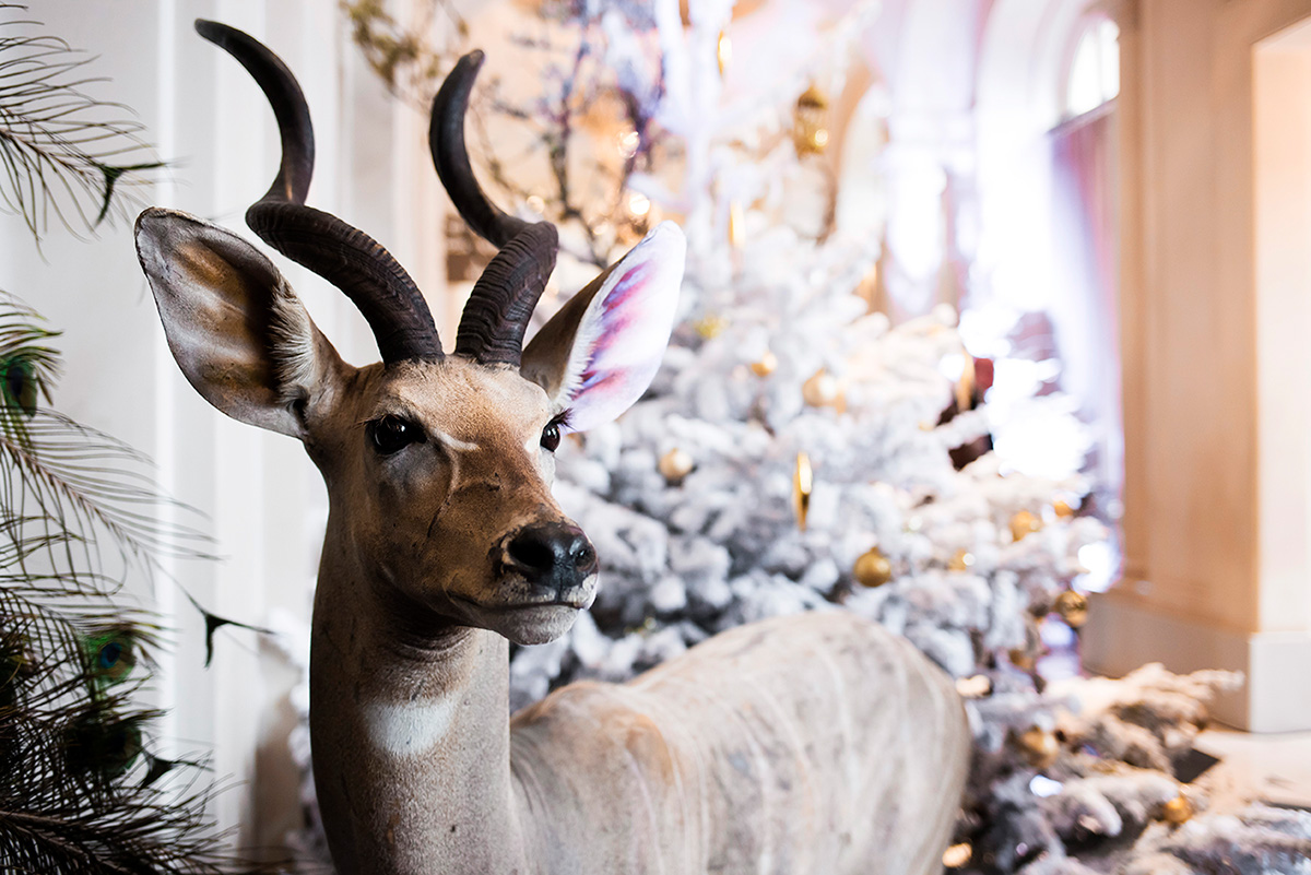 Christmas decorations by Deyrolle at Trianon Palace Versailles