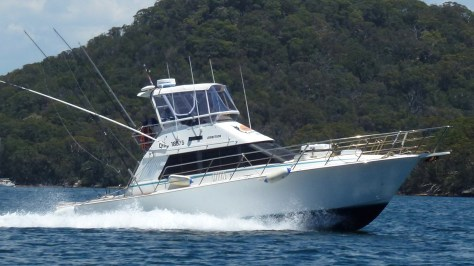 Game Fishing Charter Sydney