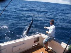 Black Marlin fishing