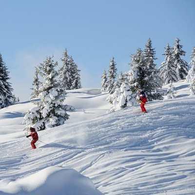 Skiing and Mountaineering