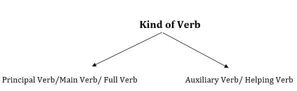 English Grammar rules Verb