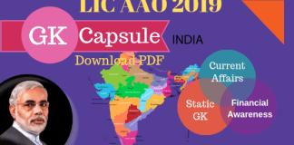 GK Capsule for LIC AAO 2019 PDF