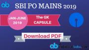SBI PO MAINS GK Capsule 2019