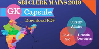 SBI CLERK MAINS Capsule 2019