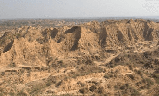 Centre to convert ravines of Chambal region into arable land with World Bank support