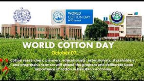 7th October: World Cotton Day