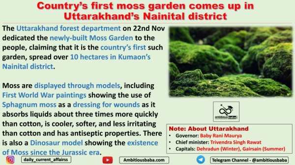 Country's first moss garden comes up in Uttarakhand's Nainital district