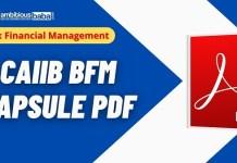 CAIIB Paper-2 Capsule PDF