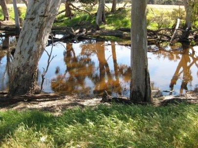 Billabong, Kangaroo Island SA
