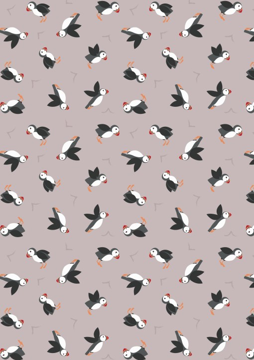 Puffins on light pebble FCST042
