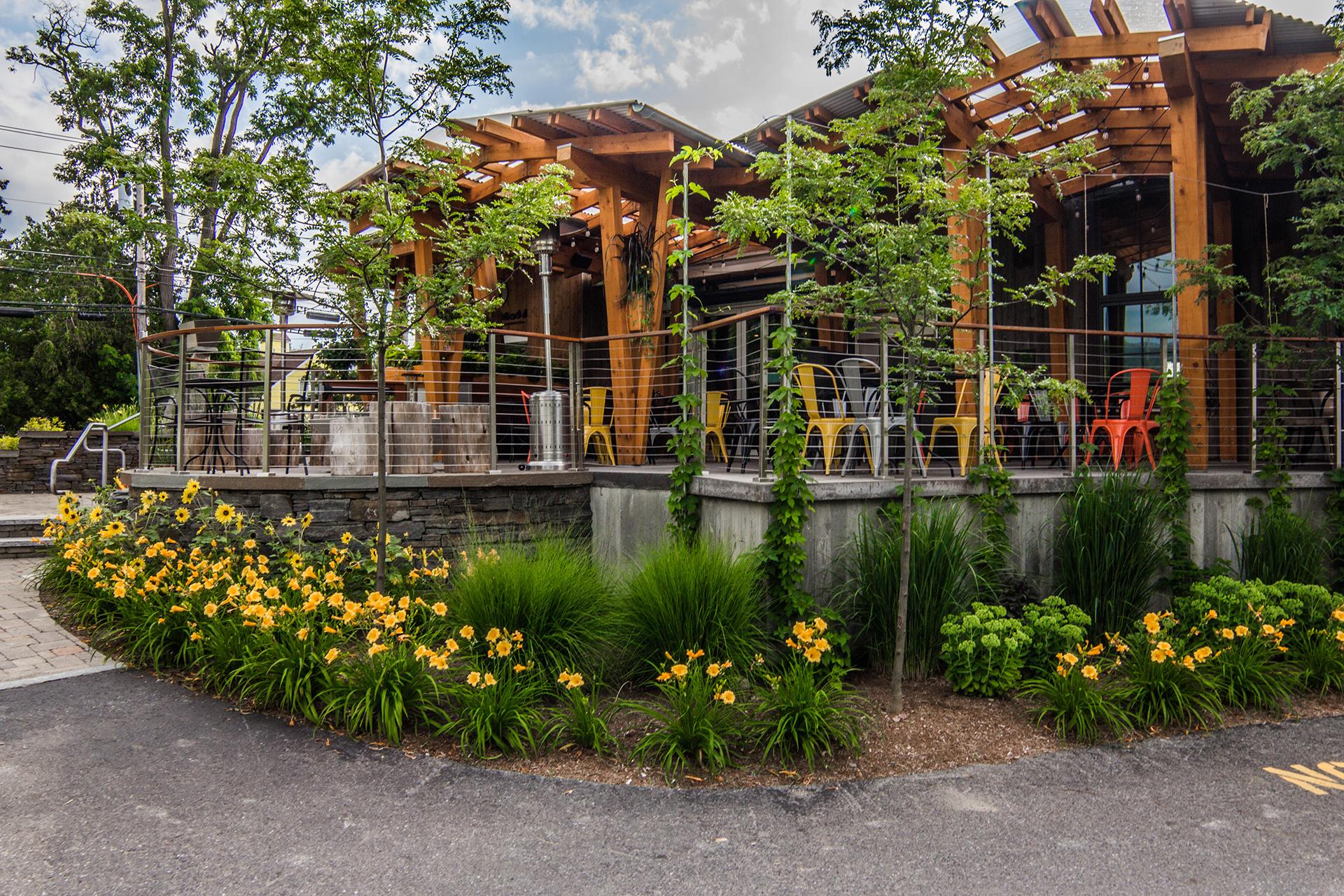 Landscape Planting at Piecasso by Ambler Design