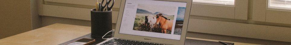 diseño y administración de webs