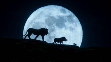 O Rei Leão - Comercial mostra pela primeira vez a voz de Simba | Videos | Revista Ambrosia