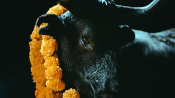 "Foals lança ""Black Bull"" antecipando Everything Not Saved Will Be Lost — Part 2 | Música | Revista Ambrosia"