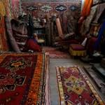 Play Farms rugs