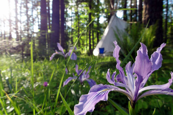 oregon-womens-yoga-retreat-tipi