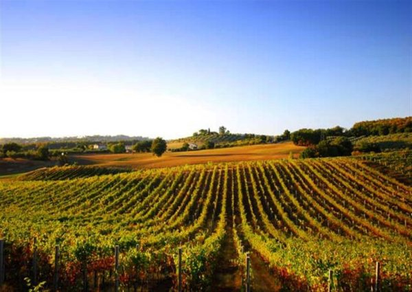 luxury-wine-yoga-retreat-southwest-france-bordeaux