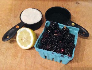 blackberry sorbet ingredients
