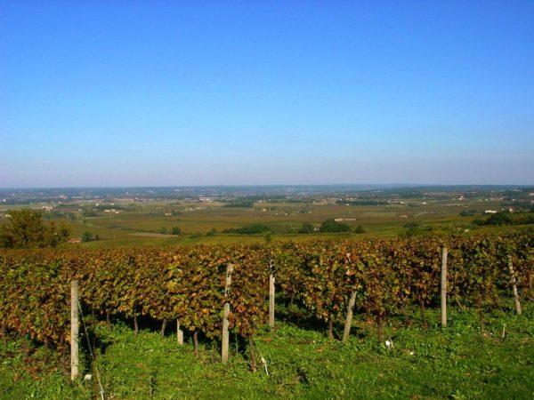 monbazillac-wine-yoga-retreat-southwest-france