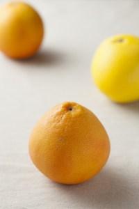 輸入フルーツ