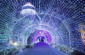 江の島シーキャンドル 光のトンネル
