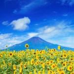 祝日「山の日」の由来と8月11日に制定された理由とは?本当は多かった日本の祝日。