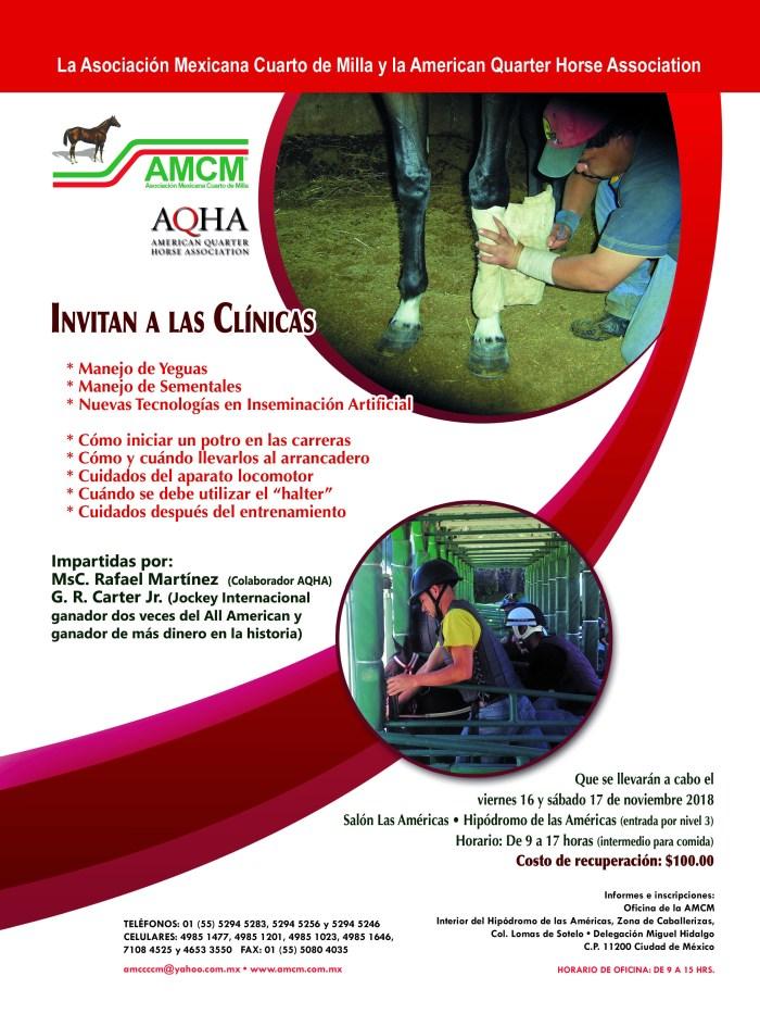 Clinicas AQHA