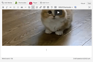adding gif to wordpress blog