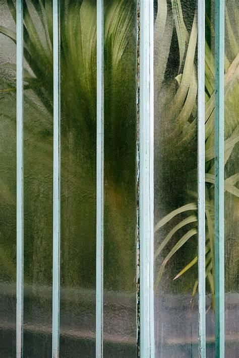 Âme, Âme bordeaux, végétal, boutique indépendante bordeaux, Fleuriste bordeaux, fleurs séchées, art, décoration bordeaux, Livres, Botanique, Botanical, Samuel Zeller