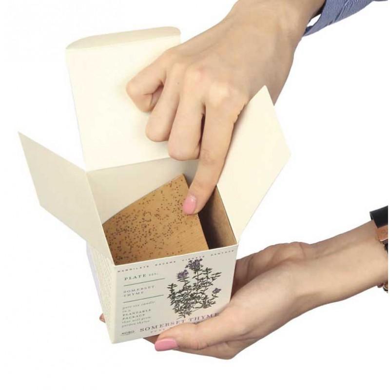 Âme Bordeaux, Bougie Plant the box à la menthe - KOBO