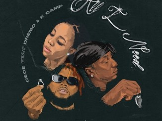 Cece – All I Need Ft Dremo & K Camp