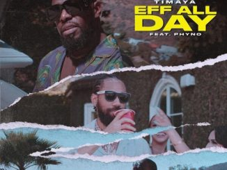 Download Video: Timaya Ft Phyno – Eff All Day