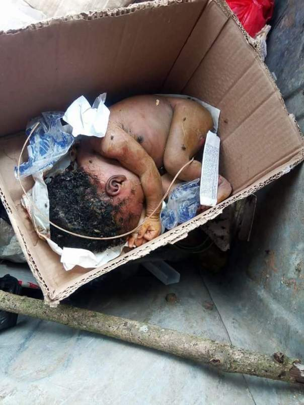 New Born Baby Dumped Inside A Dustbin In Calabar 2