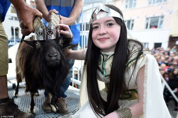 Goat Was Crowned King Of Small Town In Ireland (4)