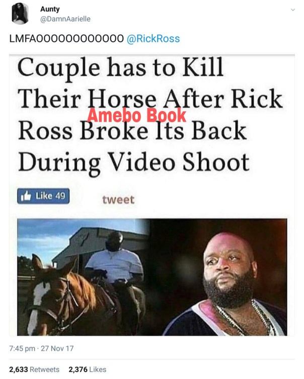 Rick Ross In Hilarious Exchange With Twitter User After She Shared Post On Couple Having To Kill Their Horse After Rapper Sat And Broke Its Back (2)