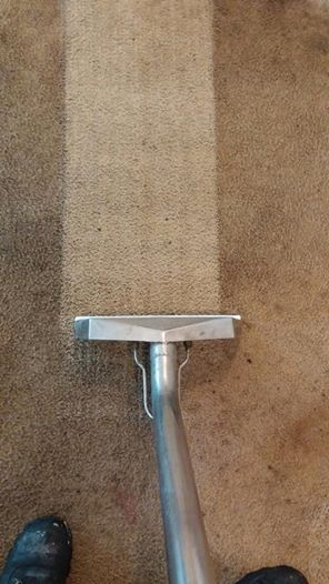 Powerful Carpet Cleaning System