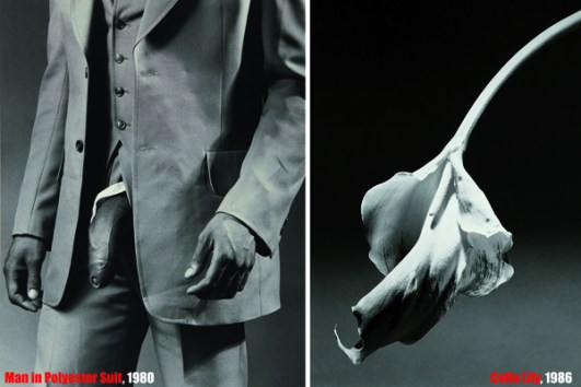 look_a_-the_pictures_robert_mapplethorpe-3