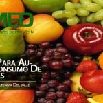 Podcast 243 AMED – 5 Consejos Para Aumentar Tu Consumo De Antioxidantes Y Disfrutar Sus Beneficios