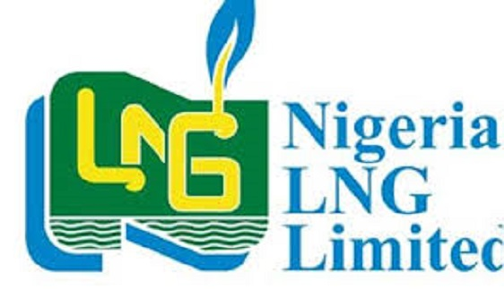 Reps attempt to amend NLNG Act without shareholders' involvement borders on illegality